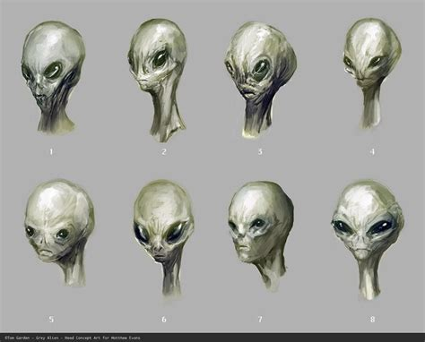 Identifying The Different Kinds Of Aliens
