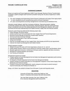Oil and gas business analyst resume