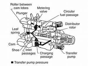 Diesel Injector Pump Diagram