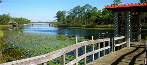 watercolor florida natural beauty luxury on 30a in fl