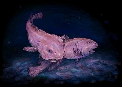 Remarkably bizarre deep sea creatures -- spooky and ...