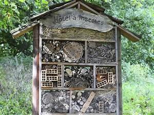 Fabriquer Un Hotel A Insecte : h tel insectes utilit et b n fices d un h tel insectes ~ Melissatoandfro.com Idées de Décoration