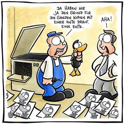 Ente Nichtlustig Lustig Joscha Bild Cartoon Dem