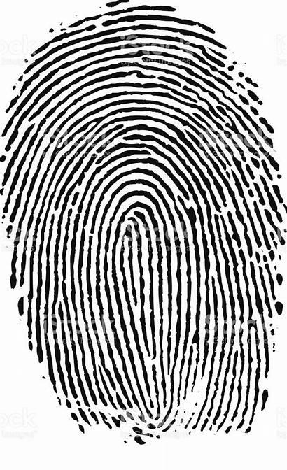 Vector Fingerprint Legacy Finger Illustration Clip Arrest