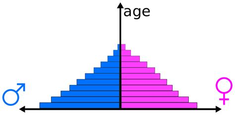 Age Structure Diagram by Population Pyramid