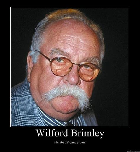 Wilfred Meme - wilford brimley he ate 28 candy bars motivational poster