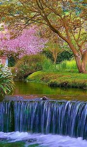Nature Android Wallpaper Android | Nature wallpaper ...