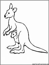 Kangaroo Coloring Pages Australian Animals Animal Australia Printable Clipart Printables Kangaroos Wallaby Google Cartoon Fun Stories Coloured Getcoloringpages Getdrawings Clipartmag sketch template