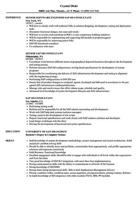 resume functional consultant erp