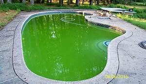 rattrapage eau verte etude de cas With comment faire revenir une piscine verte