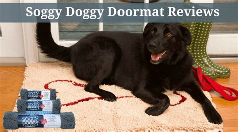 soggy doormat reviewed and compared best central