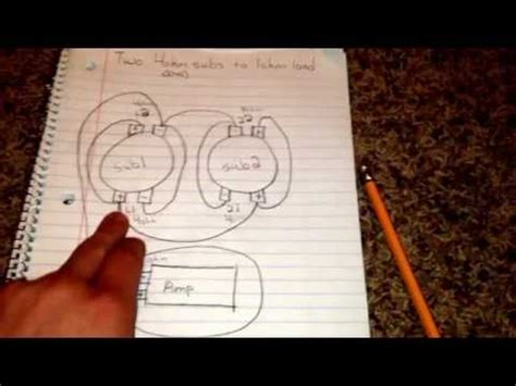 Hk395 Subwoofer Wiring Diagram by Single Dvc 4 Ohm Wiring Dailystandart