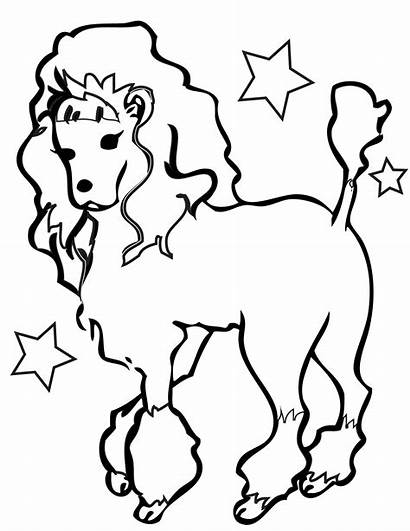 Coloring Poodle Clipart Pages Dog Cat Dogs