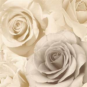 Muriva Madison Rose Floral Photographic Flower Wallpaper