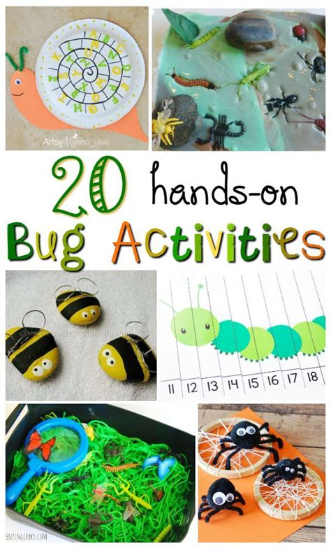 Insect Activities On Pinterest