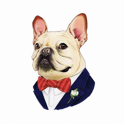 Bulldog French Tattoo Clip Tattly Transparent Dog