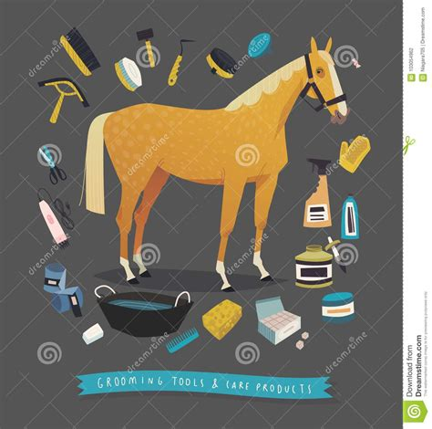 horse grooming tools stock vector illustration bucket