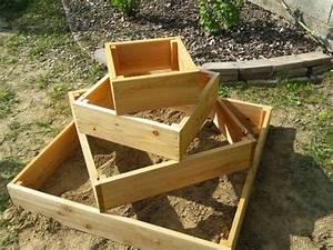 Pyramide Selber Bauen : gro e kartoffelernte auf kleiner fl che biogarten blog ~ Lizthompson.info Haus und Dekorationen