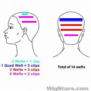 Fantastic Diagram For Hair Extensions