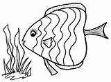 Tuna Coloring Pages Fish Printable Getcolorings Print sketch template