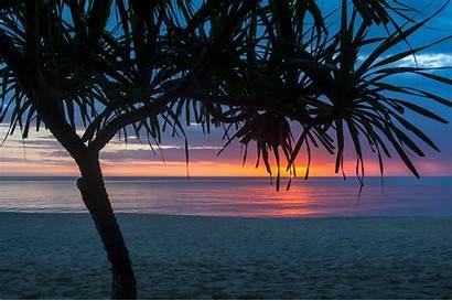 Summer Wallpapers Beach Laptop Tree Chromebook Seashore