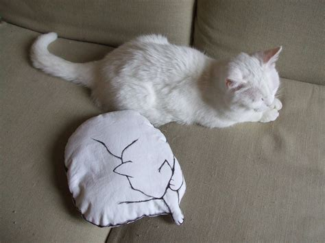 Cucire Un Cuscino Mos Mea Cuscino Con Gatto Come Realizzare Un Cuscino