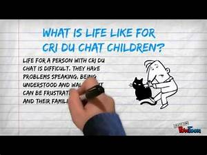 Genetic Disease Project Cri Du Chat Syndrome Youtube