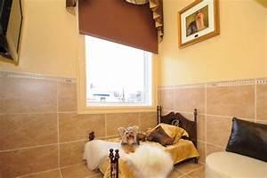 Hotel Pour Chien : des h tels qui ont du chien st phanie vallet animaux ~ Nature-et-papiers.com Idées de Décoration