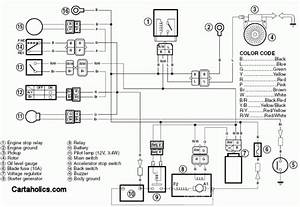 Yfm 450 Wiring Diagram