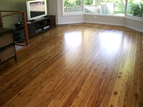 Cypress Pine ? Callitris Glaucophylla   Gloria Timber Flooring