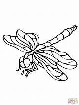 Coloring Pages Dragonfly Dragonflies Drawing Insect Clipart Nature Printable Wings Leaf Supercoloring Bees Select Category Crafts Fauna Flight Colouring Sheets sketch template