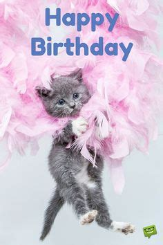cute happy birthday quotes  sayings images