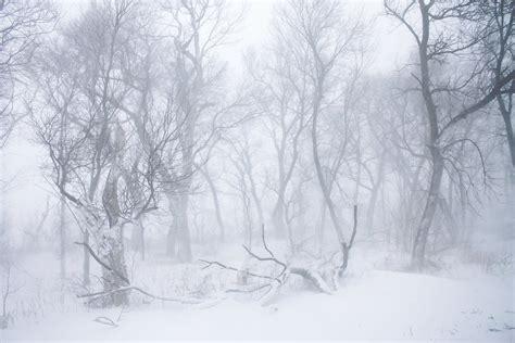 blizzard   obsession stock  deviantart