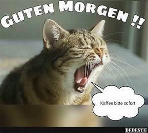 Lustige Guten Morgen Kaffee Bilder : oldies f r oldies moin eissi moin inga ~ Frokenaadalensverden.com Haus und Dekorationen