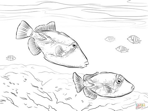 thinking colors  coloring contest cuddly critters blog