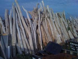 Ou Acheter Du Bois Flotté : stock de troncs de bois flott album photos vente bois ~ Teatrodelosmanantiales.com Idées de Décoration