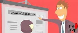 Chart Of Accounts In Sap What Is Chart Of Accounts A Detailed Analysis