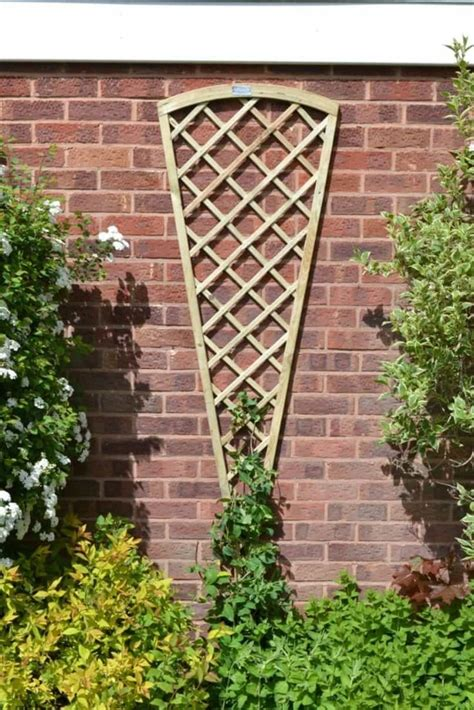 Backyard Trellis Ideas by 1207 Best Pergola Pictures Arbors And Trellis Images On