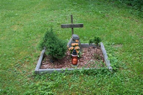 Burial Backyard by Why You Shouldn T Bury Your Pet In The Backyard