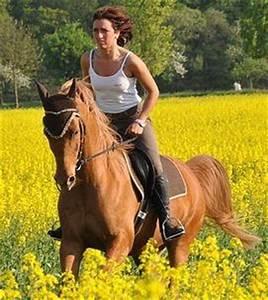 Pferde Kaufen Bremen : reitbeteiligung reitpartner in land bremen biete suche kleinanzeigen ~ Orissabook.com Haus und Dekorationen