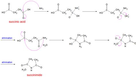 ge water filter organic chemistry reaction of succinic acid with ammonia