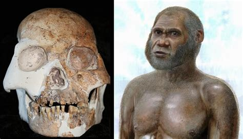 New Humanoid Species Found In China