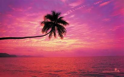 Sunset Beach Pink Wallpapers Backgrounds Rainbow Sunsets
