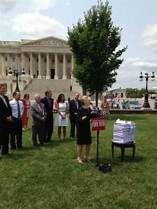 "GOP legislators urge public to ""fire"" Senate Majority ..."