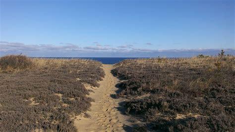 Top 5 Epic Cape Cod Hiking Trails  The Platinum Pebble