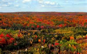 Northern Michigan Fall Colors
