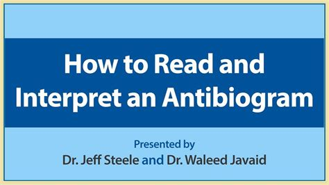 How To Read And Interpret An Antibiogram Youtube