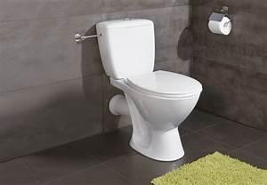Stand Wc Mit Spülkasten Spülrandlos : alles ber toiletten von wc sch ssel bis sp lkasten ~ Frokenaadalensverden.com Haus und Dekorationen