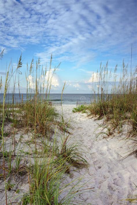 path   dunes  calm blue ocean stock image