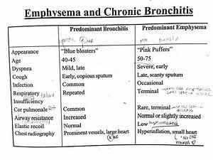 Emphysema And Chronic Bronchitis Icu Nursing Nursing